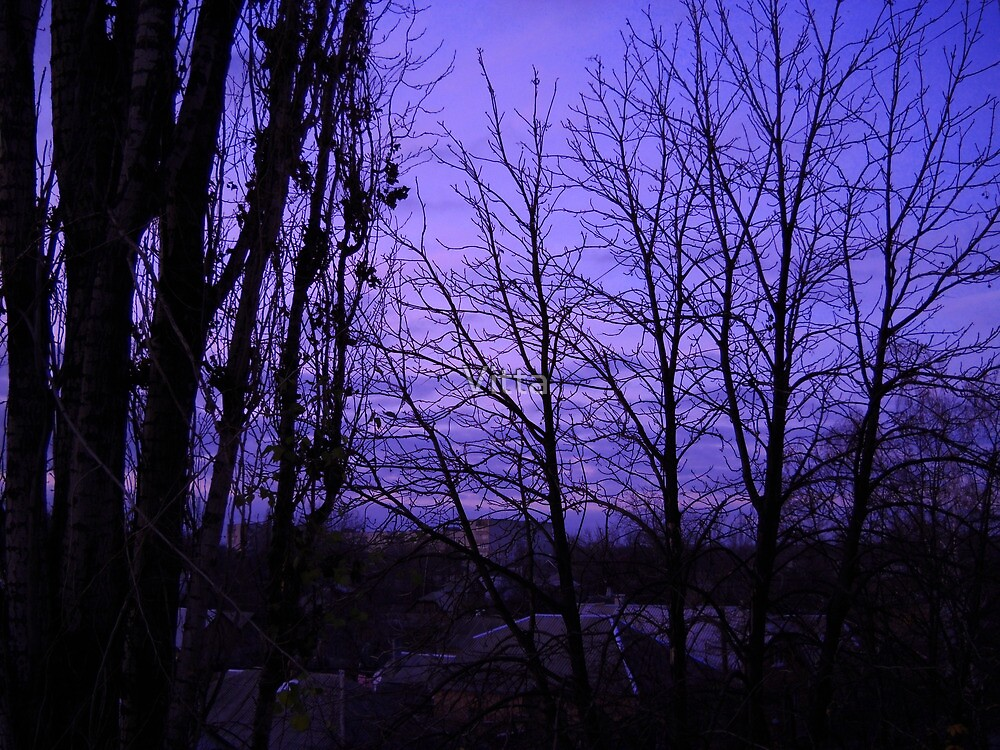December evening. by Vitta