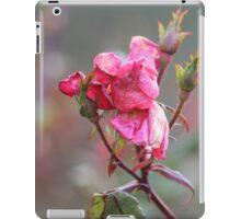 Faded Pink Rose iPad Case/Skin