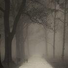 Road To Nowhere by Ilcho Trajkovski