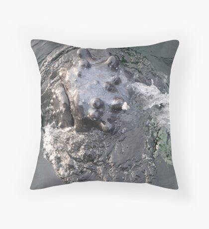 For Whale Geeks Only Throw Pillow