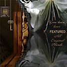 All Original Blends Feature Banner Entry by Carmen Holly