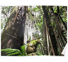 Tree Head Poster