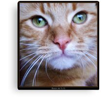 Miss Ginger Mia Canvas Print