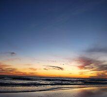 Gulf Coast by Colleen Friedman
