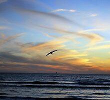 Pastel Skies by Colleen Friedman