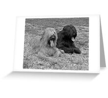 Teddy & Dolly #3 Greeting Card