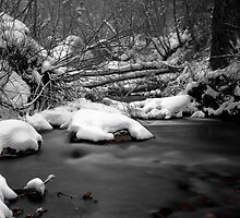 Winter Water Partial Color by CDNPhoto