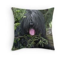 Teddy #2 Throw Pillow