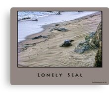 Lonely Seal Canvas Print