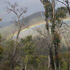 Rainbow - Aberfeldie River Valley by happy3741