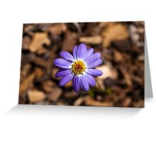 Happy Flower Greeting Card
