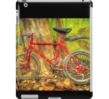 HDR iPad Case/Skin