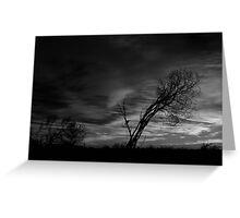 Outback Sunrise (bw)3 Greeting Card