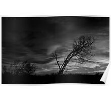 Outback Sunrise (bw)3 Poster