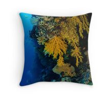West Wall - North Horn Throw Pillow