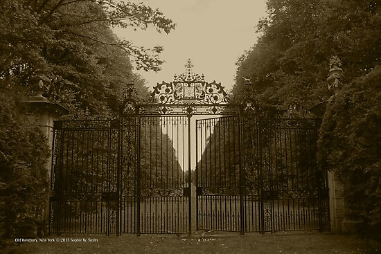 Wrought Iron Gate | Old Westbury, New York  by © Sophie W. Smith