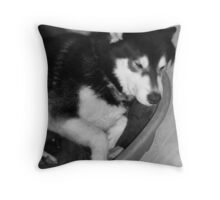 Chilled-out Snowdog Throw Pillow