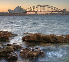 Sydney Opera House V by Paul Duckett