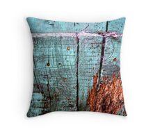 old azure wooden door Throw Pillow