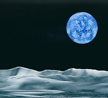 Earthrise by Anne Pearson