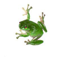 Australian Green Tree Frog by cempakabali