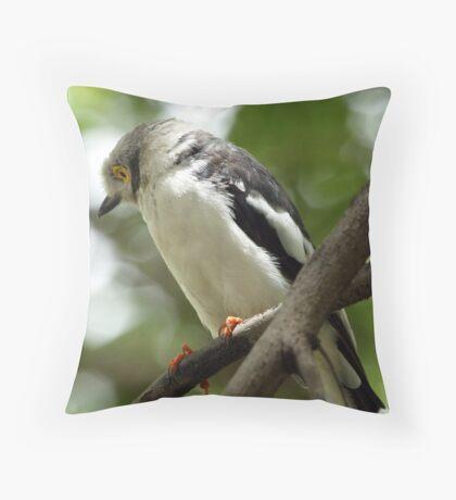 White Crested Helmet Shrike Throw Pillow