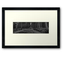The road less travelled... Framed Print
