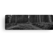 The road less travelled... Canvas Print