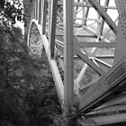 Steel Bridge by Theodore Kemp