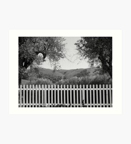 White Picket Fence Art Print