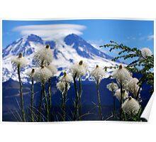 Bear Grass with Mt. Rainier Poster