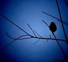 Blue Shadow Bird I by Michelle BarlondSmith