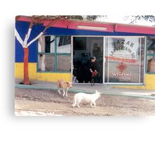 Mexico dogs Metal Print