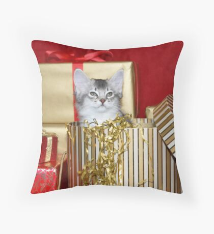 somali kitten in a Christmas box! Throw Pillow