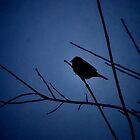 Blue Shadow Bird III by Michelle BarlondSmith