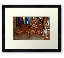 Hey Kid Lets Hang Out, Penny & Cinamon 09 Framed Print