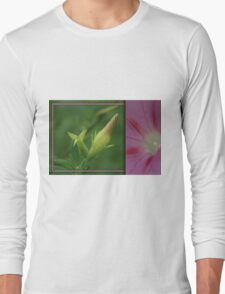 Morning Glory Diptych... South Africa, Free State Long Sleeve T-Shirt