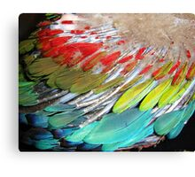 New Wing. Canvas Print