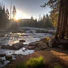 Morning at Lyell Fork by Eileen Ringwald