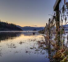 Derwentwater Dawn by David Robinson