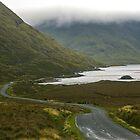 Misty Irish Morning by Sherri Fink