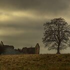 The Tree And The Barn by SimplyScene