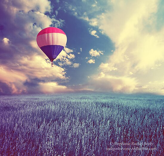 Gravity Is No Match For The Courage Of Your Heart by Stephanie Rachel Seely