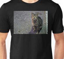 Alley Cat Unisex T-Shirt