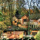 """Tree House at Alnwick Castle Grardens"" by Bradley Shawn  Rabon"