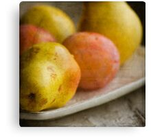 Fruits on a plate Canvas Print