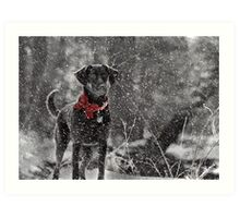 Dashing Through the Snow... Art Print