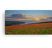 An Evening at Polly Joke Poppy Fields Canvas Print