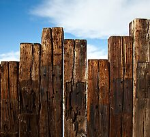 View of the Fence by Belle Farley
