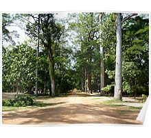 Path to Angkor - Siam Reap, Cambodia Poster